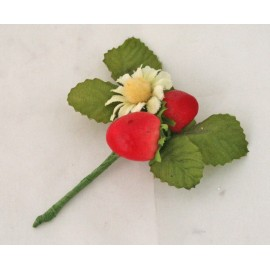Wild strawberries with. Red