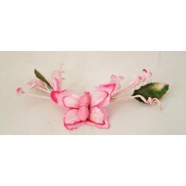 Farfalla col. Rosa acceso