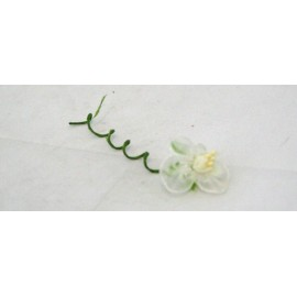 Flower in organza with cream