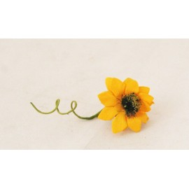 Sunflower with. Yellow